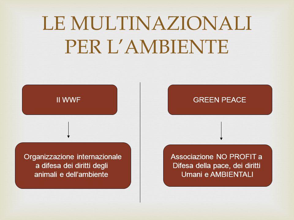 LE MULTINAZIONALI PER L'AMBIENTE Il WWFGREEN PEACE Organizzazione internazionale a difesa dei diritti degli animali e dell'ambiente Associazione NO PR