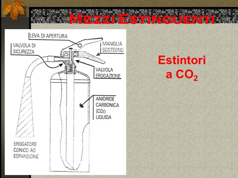 Mezzi Estinguenti Estintori a CO 2