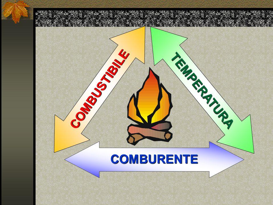 COMBURENTE COMBUSTIBILE TEMPERATURA