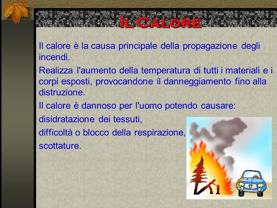 Il Calore Il calore è la causa principale della propagazione degli incendi.