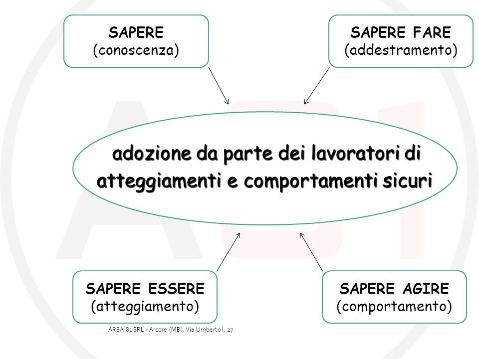 adozione da parte dei lavoratori di adozione da parte dei lavoratori di atteggiamenti e comportamenti sicuri atteggiamenti e comportamenti sicuri SAPE