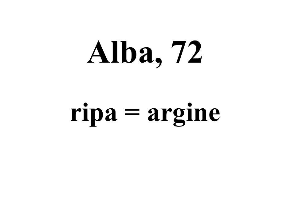 Alba, 72 ripa = argine