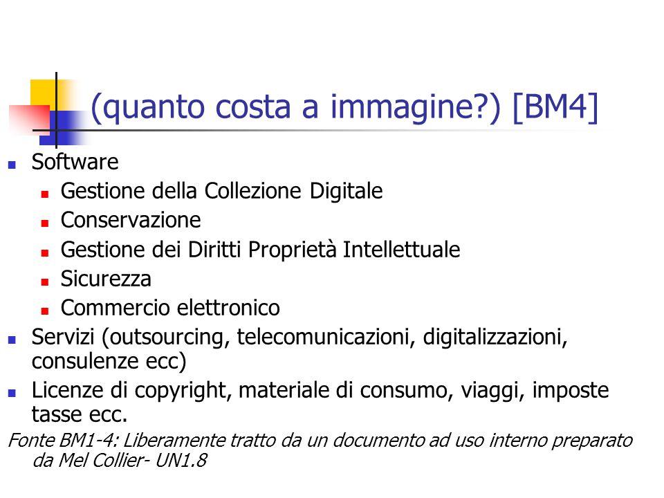 (quanto costa a immagine?) [BM4] Software Gestione della Collezione Digitale Conservazione Gestione dei Diritti Proprietà Intellettuale Sicurezza Commercio elettronico Servizi (outsourcing, telecomunicazioni, digitalizzazioni, consulenze ecc) Licenze di copyright, materiale di consumo, viaggi, imposte tasse ecc.