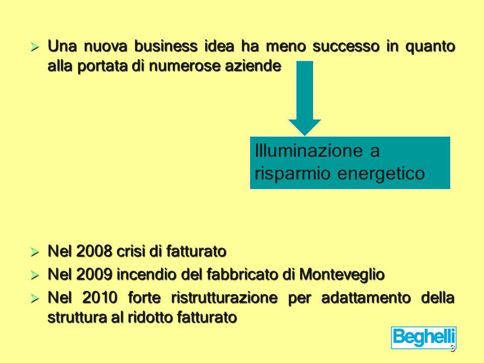  Una nuova business idea ha meno successo in quanto alla portata di numerose aziende  Nel 2008 crisi di fatturato  Nel 2009 incendio del fabbricato di Monteveglio  Nel 2010 forte ristrutturazione per adattamento della struttura al ridotto fatturato Illuminazione a risparmio energetico 3