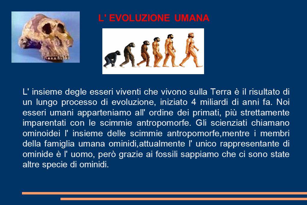 L EVOLUZIONE UMANA L insieme degle esseri viventi che vivono sulla Terra è il risultato di un lungo processo di evoluzione, iniziato 4 miliardi di anni fa.