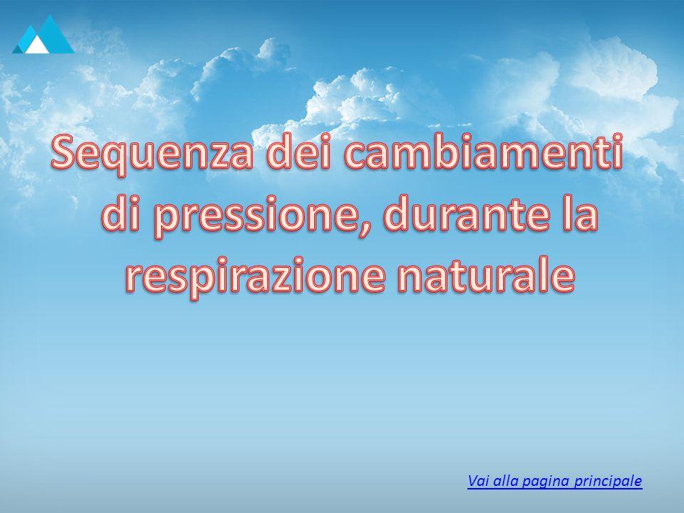 1) A riposo, proprio prima di un inspirazione, la pressione dell aria all interno dei polmoni è uguale alla pressione atmosferica, che è di circa 760 mm di Hg.