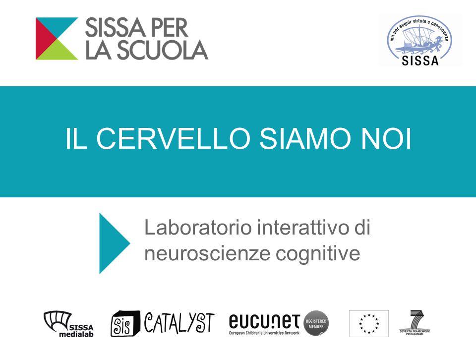 IL CERVELLO SIAMO NOI Laboratorio interattivo di neuroscienze cognitive