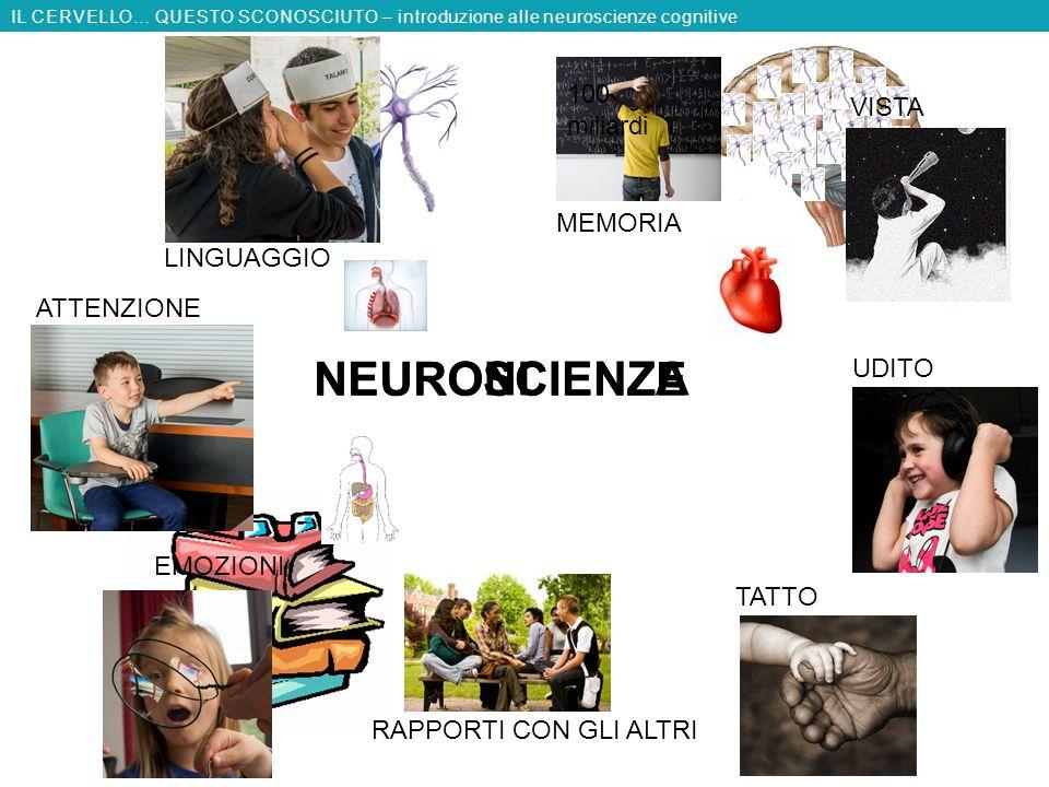 NEUROSCIENZE NEURONI SCIENZA VISTA MEMORIA TATTO RAPPORTI CON GLI ALTRI IL CERVELLO… QUESTO SCONOSCIUTO – introduzione alle neuroscienze cognitive 100 miliardi LINGUAGGIO UDITO ATTENZIONE EMOZIONI