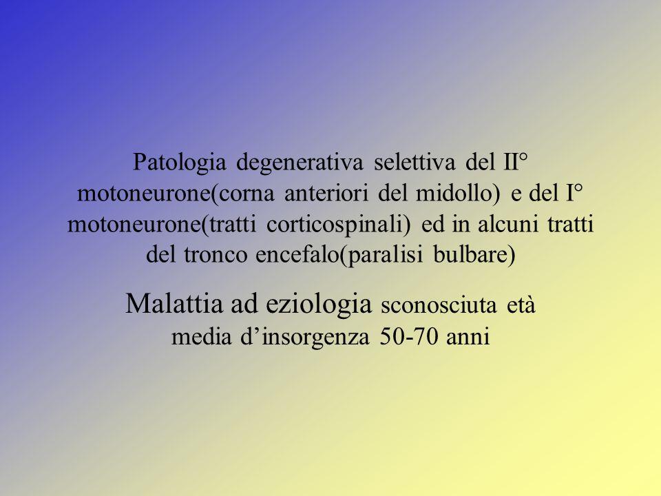 Patologia degenerativa selettiva del II° motoneurone(corna anteriori del midollo) e del I° motoneurone(tratti corticospinali) ed in alcuni tratti del tronco encefalo(paralisi bulbare) Malattia ad eziologia sconosciuta età media d'insorgenza 50-70 anni