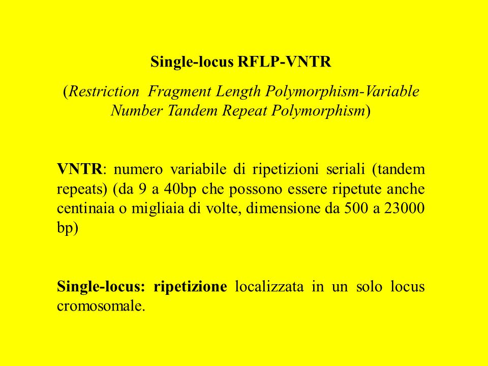 Single-locus RFLP-VNTR (Restriction Fragment Length Polymorphism-Variable Number Tandem Repeat Polymorphism) VNTR: numero variabile di ripetizioni ser
