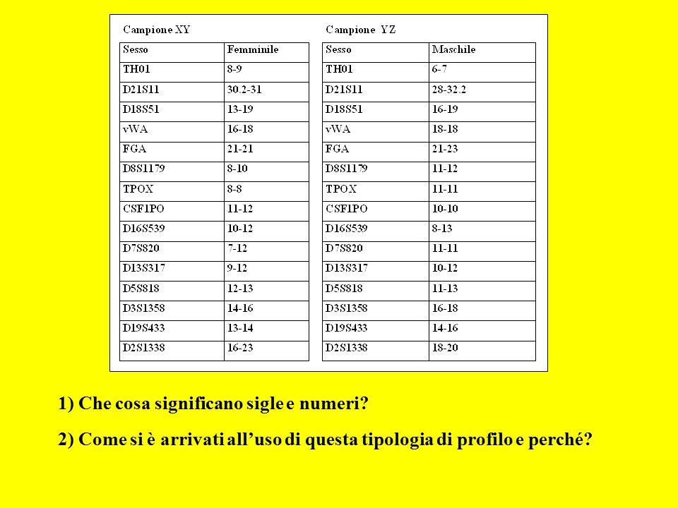 1) Che cosa significano sigle e numeri? 2) Come si è arrivati all'uso di questa tipologia di profilo e perché?