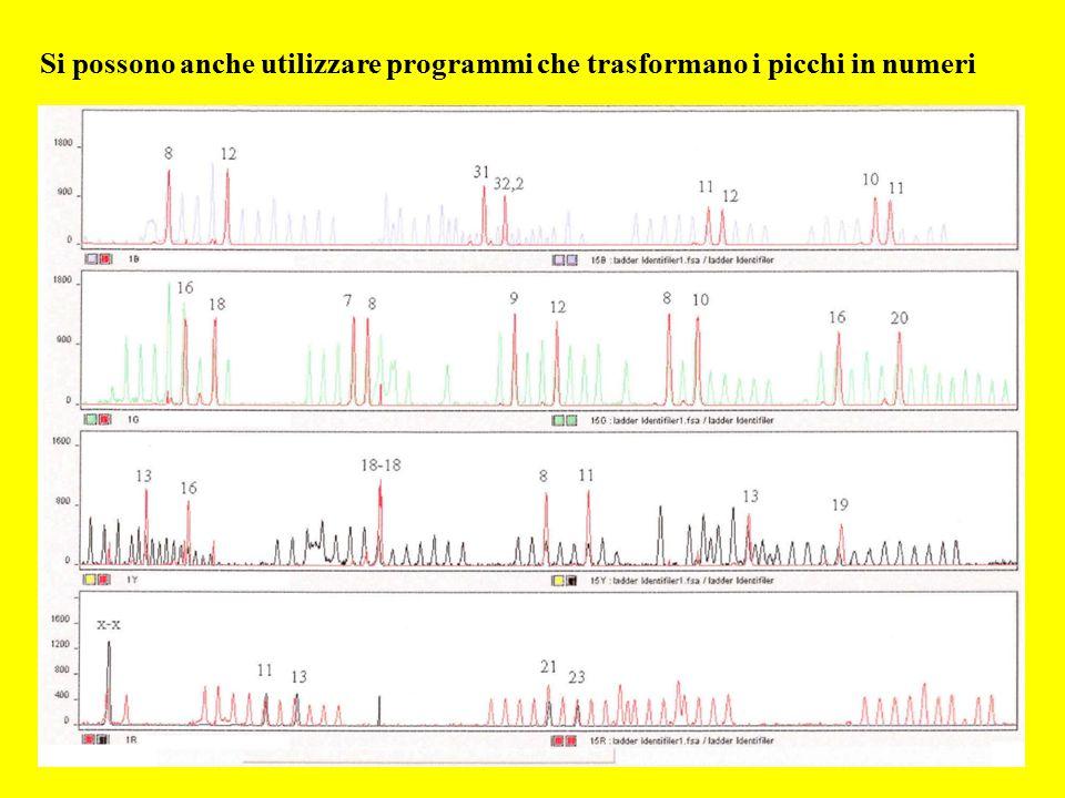Si possono anche utilizzare programmi che trasformano i picchi in numeri