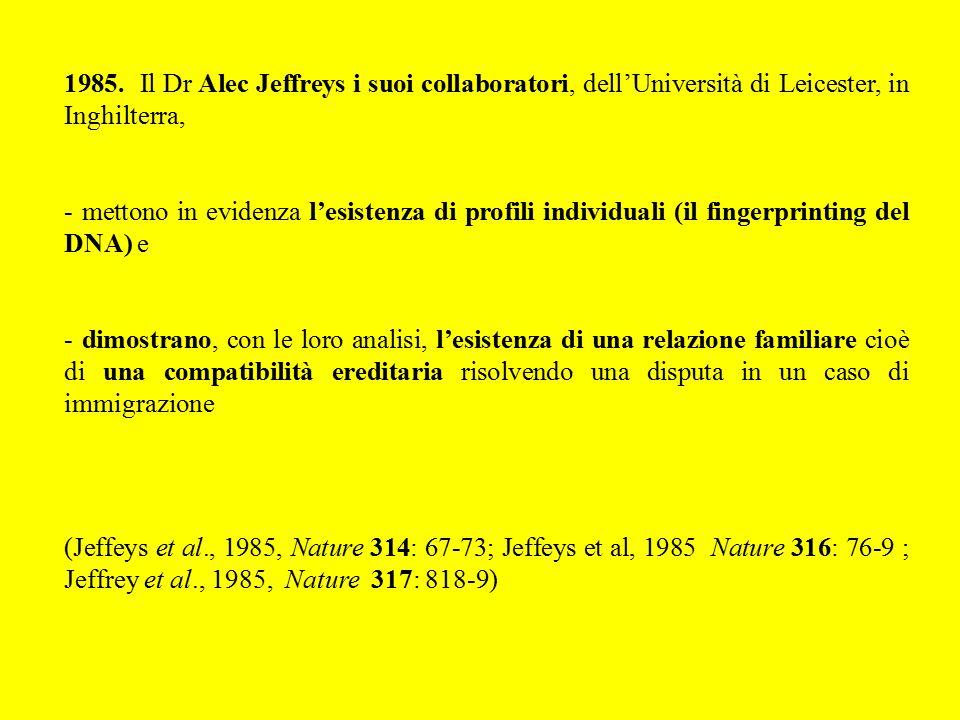 1985. Il Dr Alec Jeffreys i suoi collaboratori, dell'Università di Leicester, in Inghilterra, - mettono in evidenza l'esistenza di profili individuali