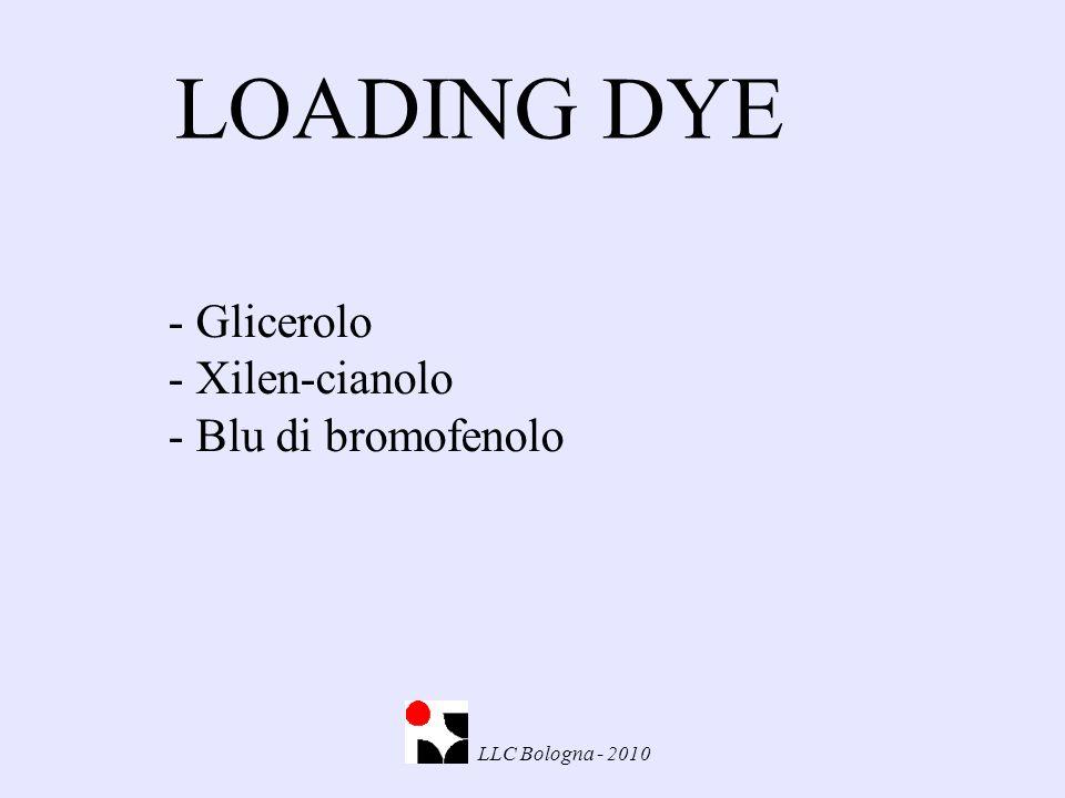LOADING DYE LLC Bologna - 2010 - Glicerolo - Xilen-cianolo - Blu di bromofenolo