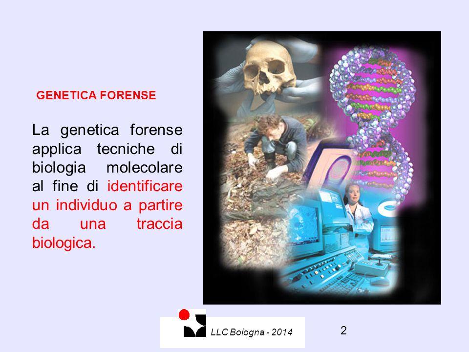 2 GENETICA FORENSE La genetica forense applica tecniche di biologia molecolare al fine di identificare un individuo a partire da una traccia biologica