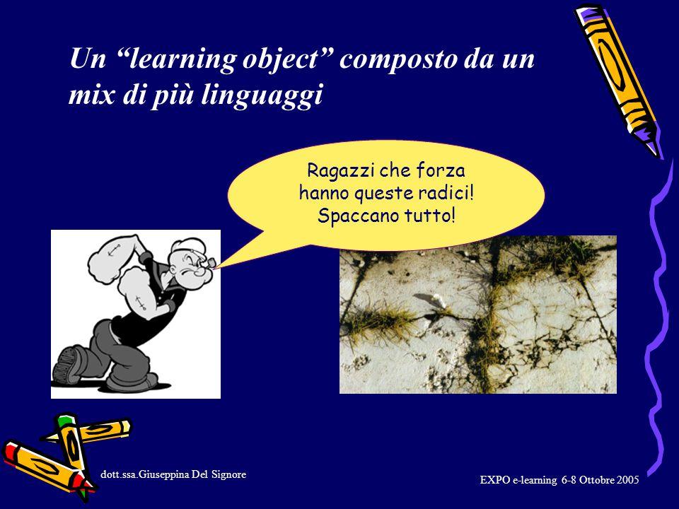 EXPO e-learning 6-8 Ottobre 2005 Durante la programmazione, per ogni differente periodo, il ricercatore/i sarà a disposizione degli studenti.