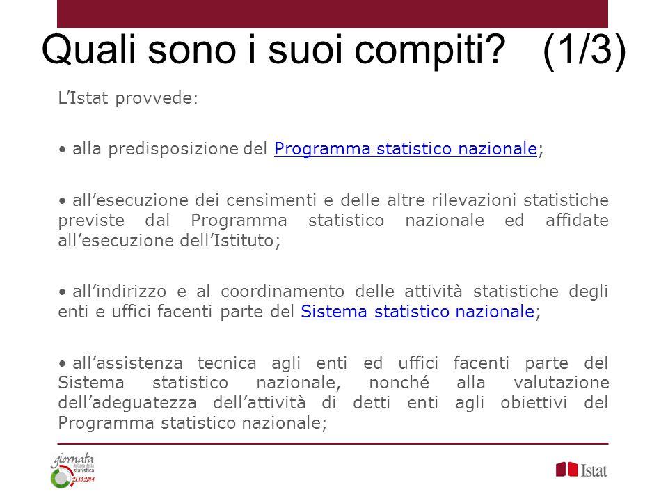 L'Istat provvede: alla predisposizione del Programma statistico nazionale;Programma statistico nazionale all'esecuzione dei censimenti e delle altre r