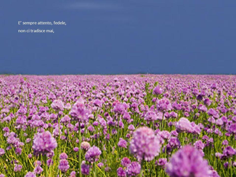 la nostra vita è appagata da note sempre liete.