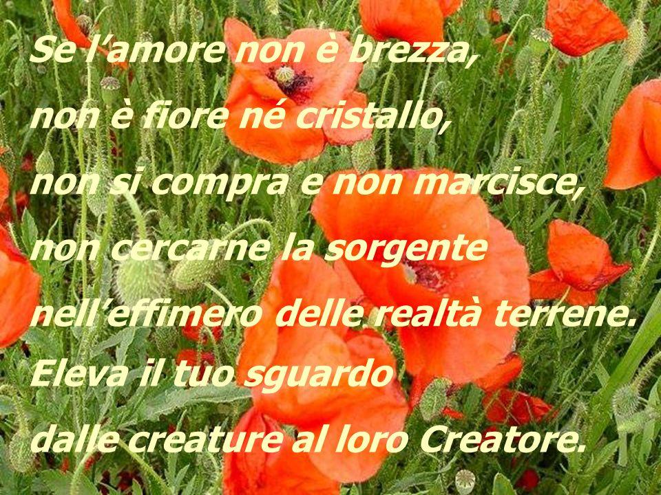 L'amore è leggero come la brezza è profumato come un fiore è limpido come un cristallo. Ma non è brezza, né fiore, né cristallo.