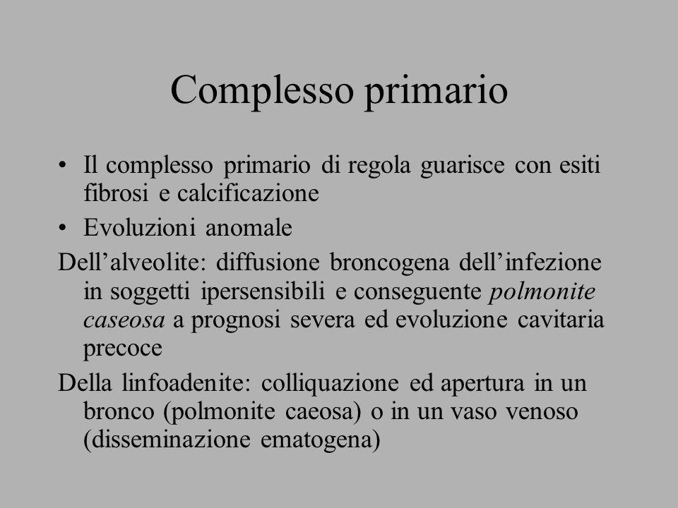 Complesso primario Il complesso primario di regola guarisce con esiti fibrosi e calcificazione Evoluzioni anomale Dell'alveolite: diffusione broncogen