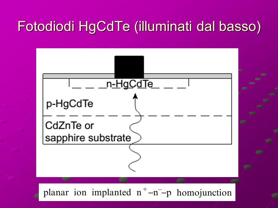 Fotodiodi HgCdTe (illuminati dal basso)