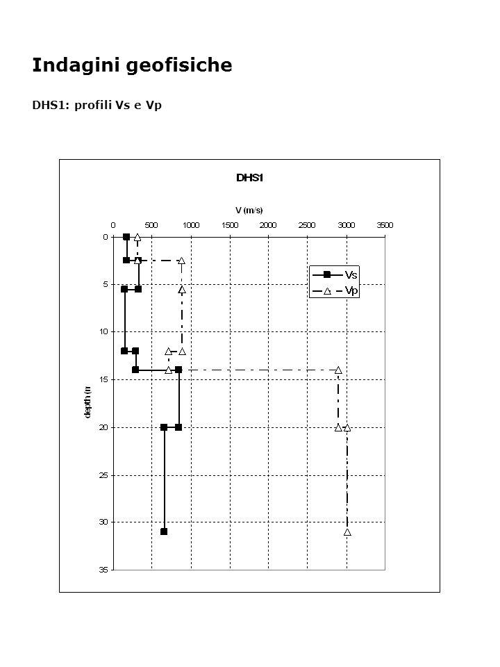 Indagini geofisiche DHS1: profili Vs e Vp