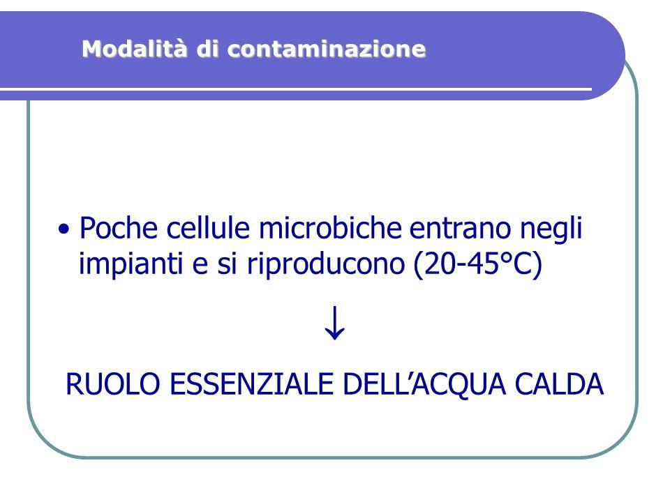Poche cellule microbiche entrano negli impianti e si riproducono (20-45°C)  RUOLO ESSENZIALE DELL'ACQUA CALDA Modalità di contaminazione