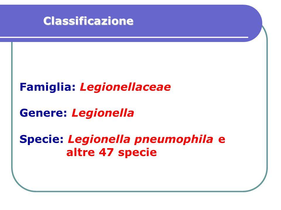 Famiglia: Legionellaceae Genere: Legionella Specie: Legionella pneumophila e altre 47 specie Classificazione
