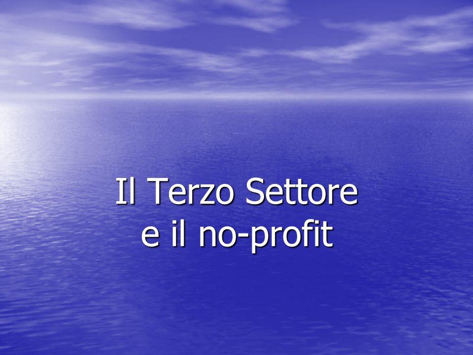 Il Terzo Settore e il no-profit