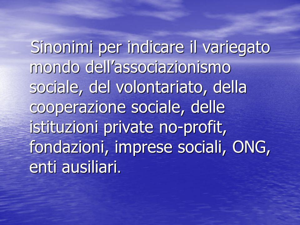 Sinonimi per indicare il variegato mondo dell'associazionismo sociale, del volontariato, della cooperazione sociale, delle istituzioni private no-prof