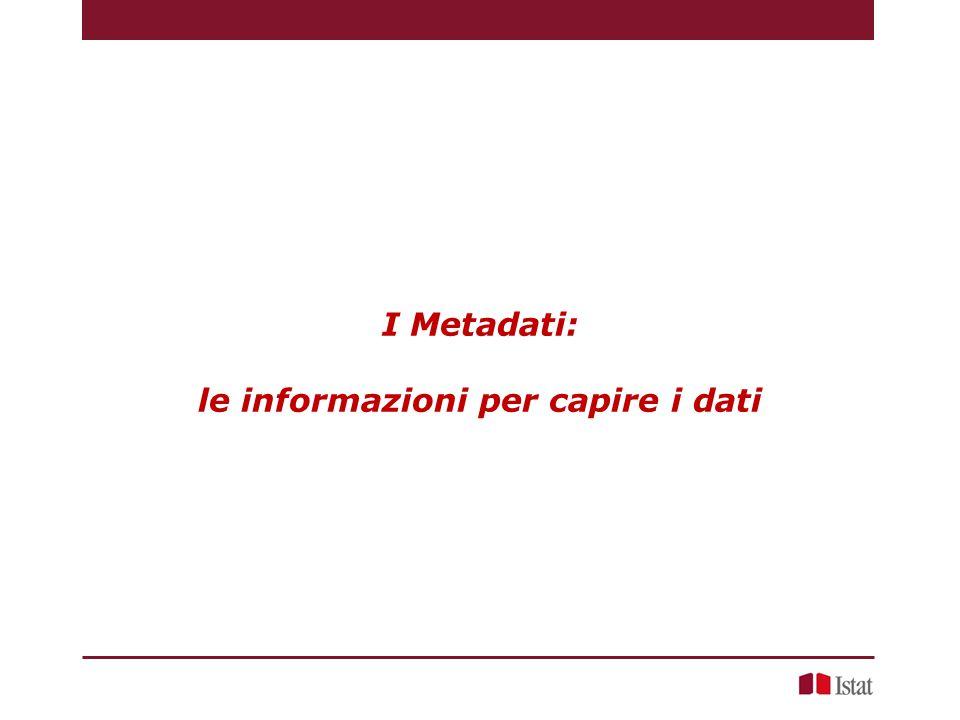 I Metadati: le informazioni per capire i dati