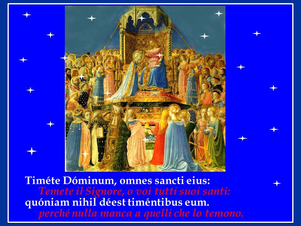 Timéte Dóminum, omnes sancti eius: Temete il Signore, o voi tutti suoi santi: quóniam nihil déest timéntibus eum.