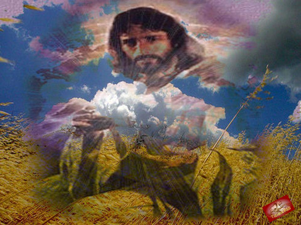 Sì, perché la croce è la base di lancio verso la vita, è il il trampolino per poter volare e varcare l'assoluto ; è la certezza che Cristo è la Speran