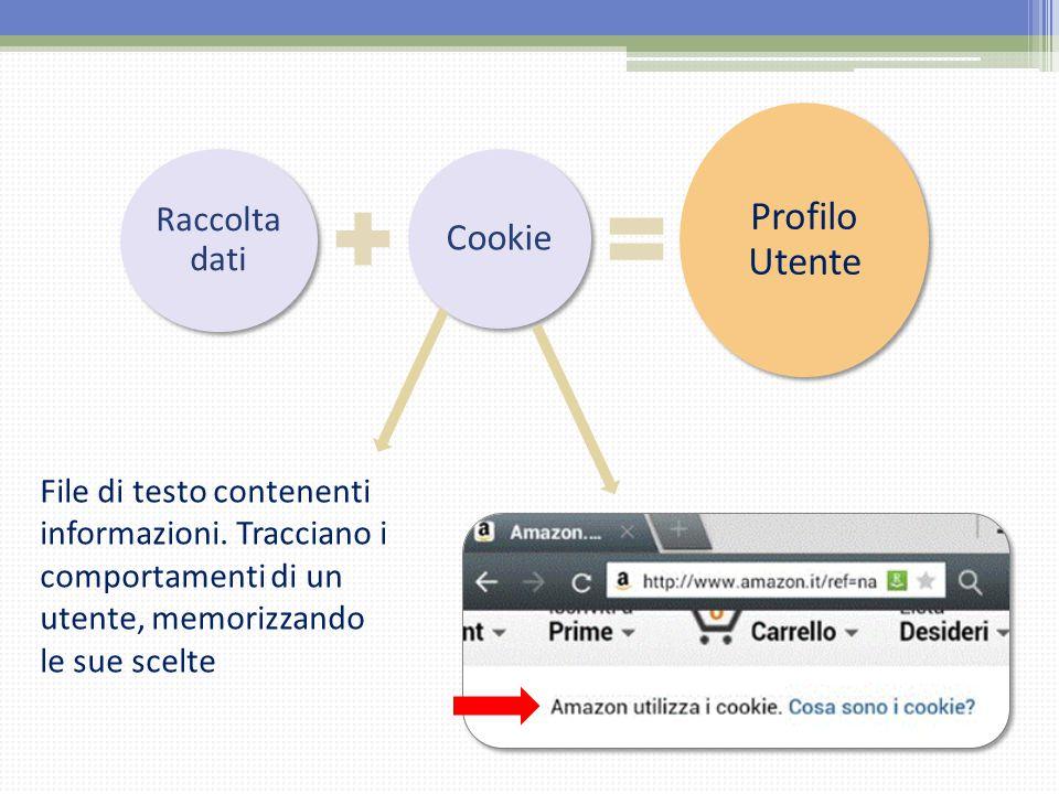 Raccolta dati Cookie Profilo Utente File di testo contenenti informazioni. Tracciano i comportamenti di un utente, memorizzando le sue scelte