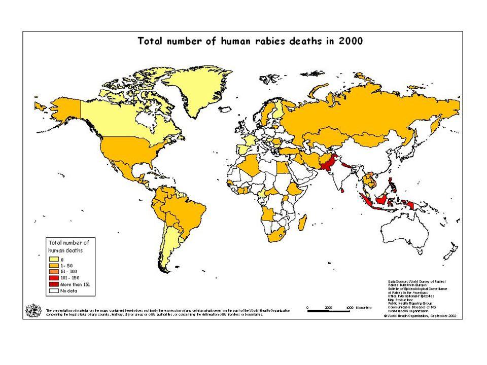 Forse la malattia infettiva conosciuta da più tempo (Mesopotamia); Primo vaccino nel 1885 (Pasteur); Scomparsa da ampie zone d'Europa; Assente in Ital
