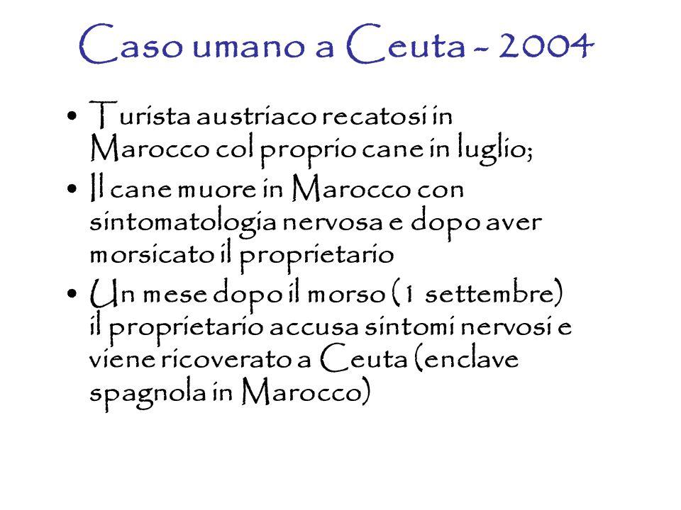 Caso umano a Ceuta - 2004 Turista austriaco recatosi in Marocco col proprio cane in luglio; Il cane muore in Marocco con sintomatologia nervosa e dopo