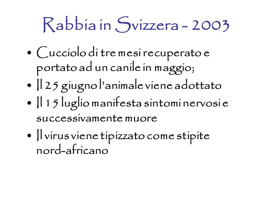 Rabbia in Svizzera - 2003 Cucciolo di tre mesi recuperato e portato ad un canile in maggio; Il 25 giugno l'animale viene adottato Il 15 luglio manifesta sintomi nervosi e successivamente muore Il virus viene tipizzato come stipite nord-africano