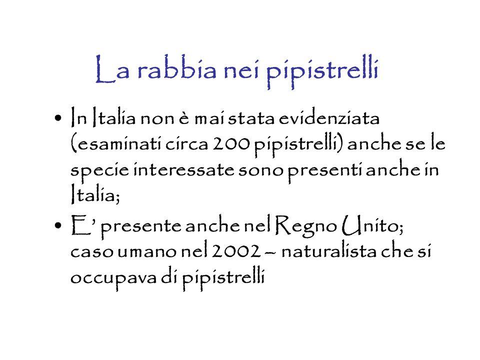 La rabbia nei pipistrelli In Italia non è mai stata evidenziata (esaminati circa 200 pipistrelli) anche se le specie interessate sono presenti anche i