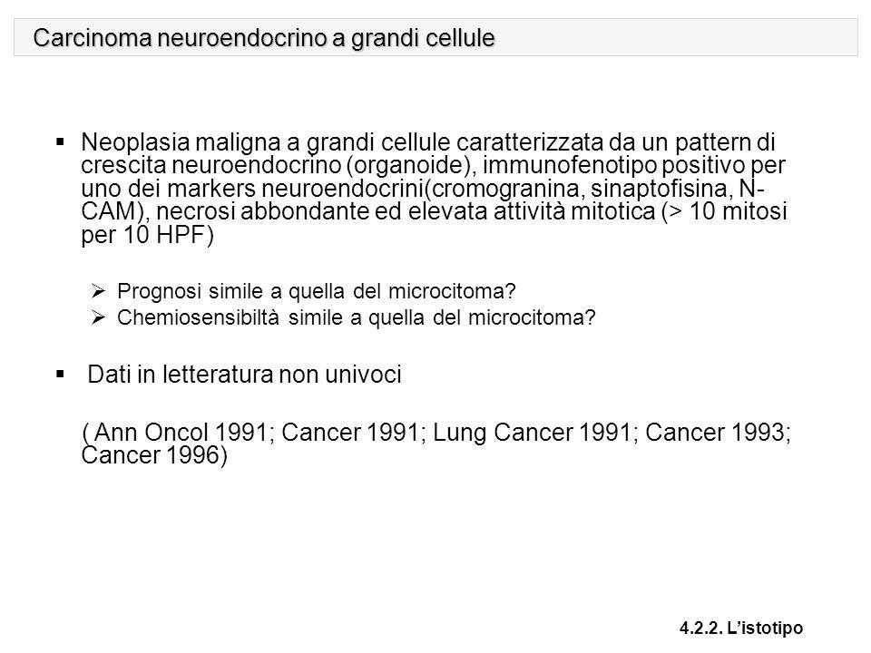 Carcinoma neuroendocrino a grandi cellule 4.2.2. L'istotipo  Neoplasia maligna a grandi cellule caratterizzata da un pattern di crescita neuroendocri