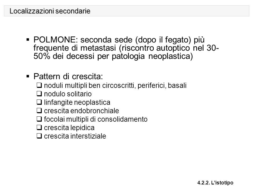 Localizzazioni secondarie 4.2.2. L'istotipo  POLMONE: seconda sede (dopo il fegato) più frequente di metastasi (riscontro autoptico nel 30- 50% dei d