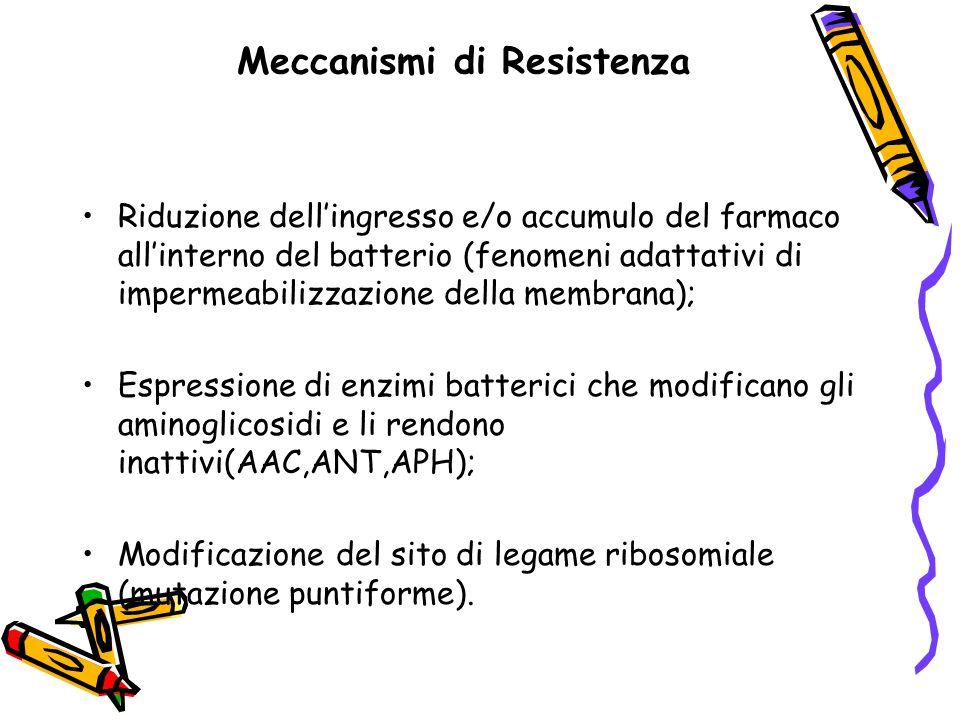 Meccanismi di Resistenza Riduzione dell'ingresso e/o accumulo del farmaco all'interno del batterio (fenomeni adattativi di impermeabilizzazione della