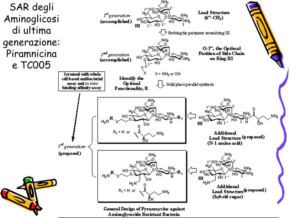 SAR degli Aminoglicosi di ultima generazione: Piramnicina e TC005