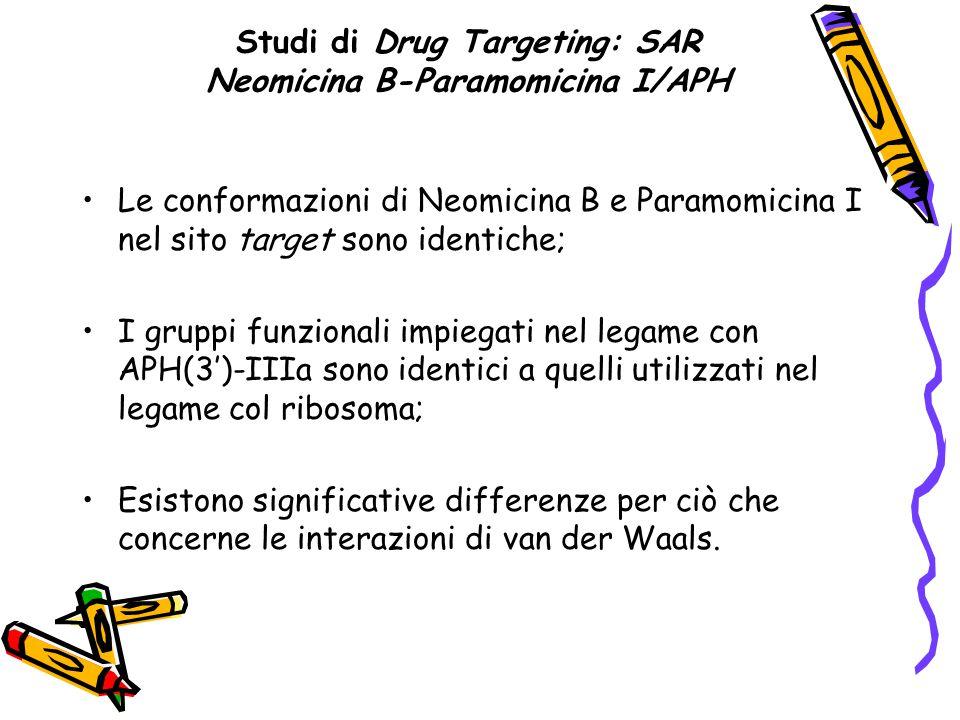 Studi di Drug Targeting: SAR Neomicina B-Paramomicina I/APH Le conformazioni di Neomicina B e Paramomicina I nel sito target sono identiche; I gruppi