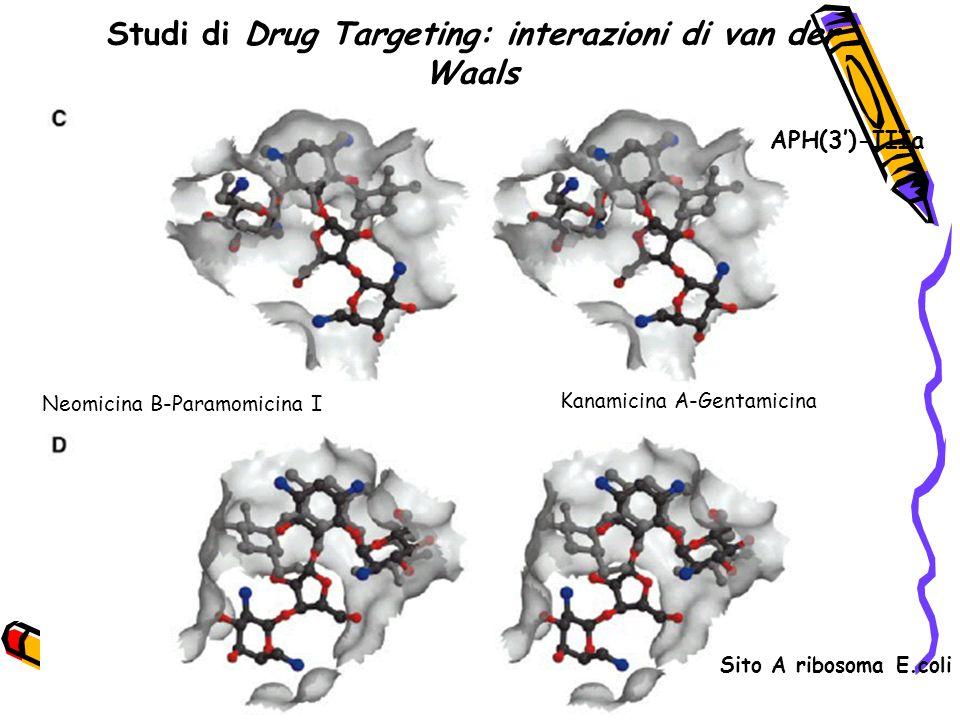 Studi di Drug Targeting: interazioni di van der Waals Neomicina B-Paramomicina I Kanamicina A-Gentamicina APH(3')-IIIa Sito A ribosoma E.coli