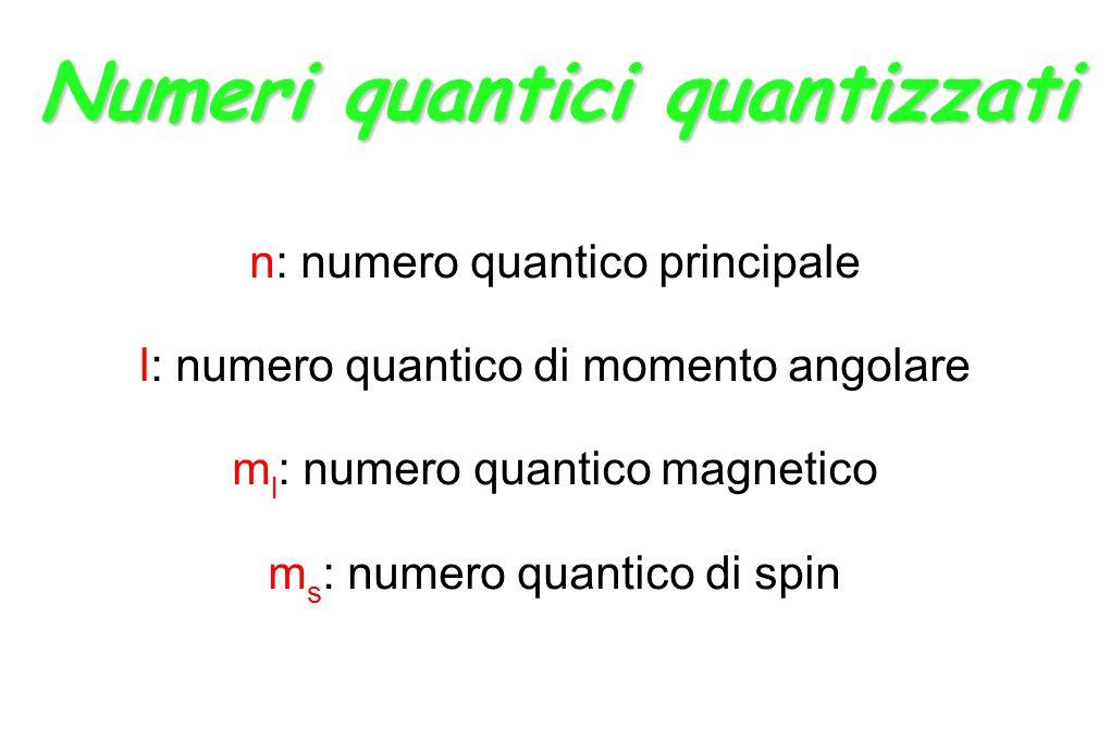 Numeri quantici quantizzati n: numero quantico principale l: numero quantico di momento angolare m l : numero quantico magnetico m s : numero quantico di spin