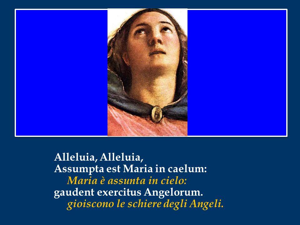 Alleluia, Assumpta est Maria in caelum: Maria è assunta in cielo: gaudent exercitus Angelorum.