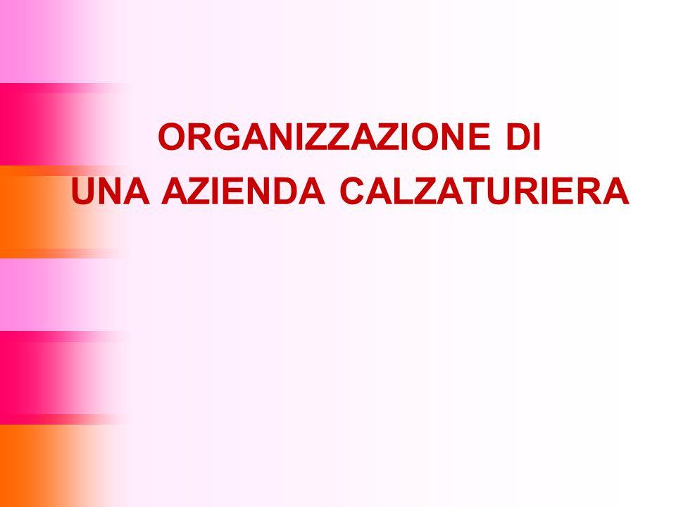 ORGANIZZAZIONE DI UNA AZIENDA CALZATURIERA
