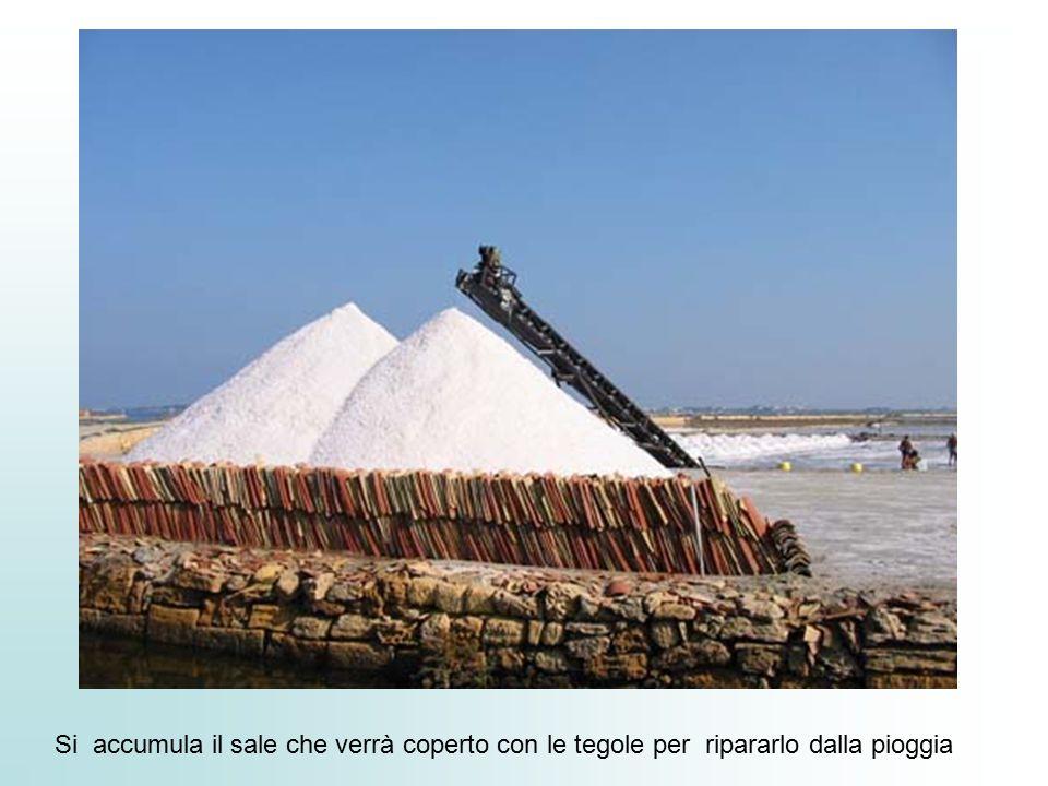Si accumula il sale che verrà coperto con le tegole per ripararlo dalla pioggia