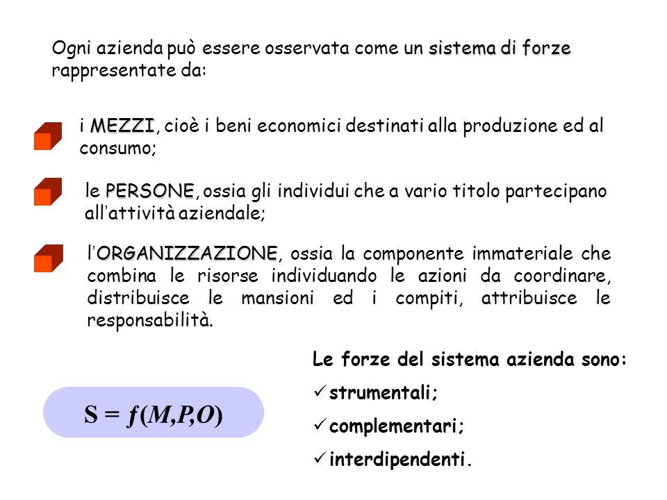 sistema di forze Ogni azienda può essere osservata come un sistema di forze rappresentate da: MEZZI i MEZZI, cioè i beni economici destinati alla prod