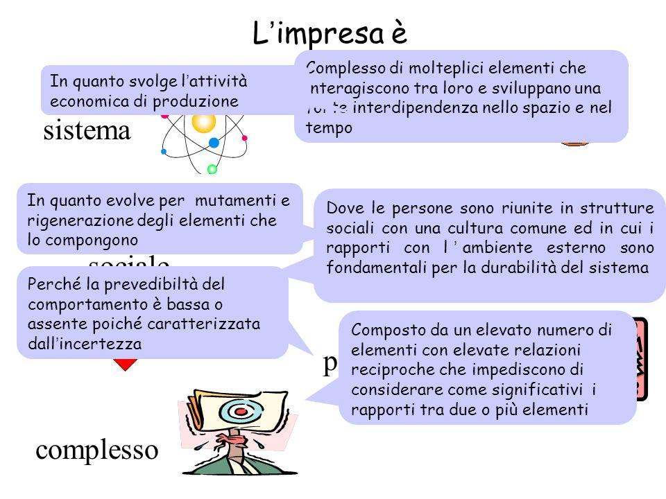 L'impresa è un sistema dinamico sociale aperto economico complesso probabilistico sistema Complesso di molteplici elementi che interagiscono tra loro